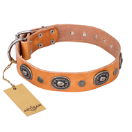 'Twinkle Twinkle' FDT Artisan Incredible Studded Tan Leather Rottweiler Collar with Silver-Like Circles