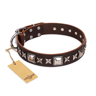 'Perfect Impression' FDT Artisan Brown Leather Rottweiler Collar with Silvery Square Studs - 1 1/2 inch (40 mm) Wide