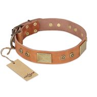 'The Middle Ages' FDT Artisan Handcrafted Tan Leather Rottweiler Dog Collar