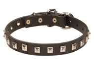 Rottweiler Exclusive Studded Leather Collar