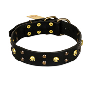 FDT Artisan 'Heavy Metal' Adorned Leather Rottweiler Collar with Skulls and Studs 1 1/2 inch (40 mm)