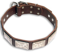 Rottweiler Leather Collar with Plates-c83