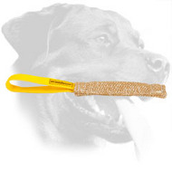 Rottweiler Nylon Leash for Effective Training and Tracking