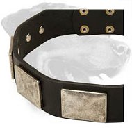 Handcrafted Leather Collar with Vintage Massive Plates for Rottweiler