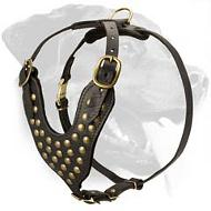 Fashion Walking Leather Dog Harness Studded with Half-Spheres for Rottweiler