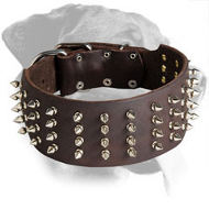 Handcrafted Leather Spiked Collar for Rottweiler