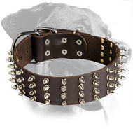Spectacular Leather Spiked Collar for Rottweiler
