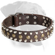 Excellent Rottweiler Leather Collar with pyramids and studs