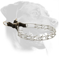 Rottweiler Pinch Collar for Behavior Correction, 1/11 inch (2.25 mm) Prong Diameter