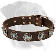 Leather Collar with Silver Plated Circles and Blue Stones for Rottweiler