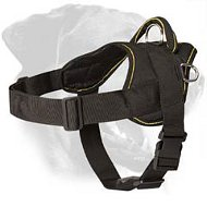 Easy Walk Nylon Rottweiler Harness