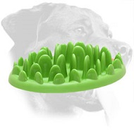 Green Lawn Small Plastic Rottweiler Feeder