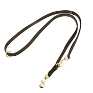 Multifunctional I-Grip Nylon Leash for Rottweiler