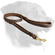Exclusive Handcrafted Leather Dog Harness for Rottweiler