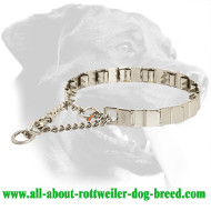Stainless Steel Rottweiler Neck Tech Pinch Collar for Behavior Correction