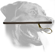 Rottweiler Stick for Agitation Training