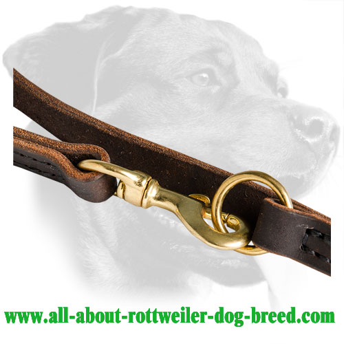 Brass Snap Hook of Rottweiler Walking Leash