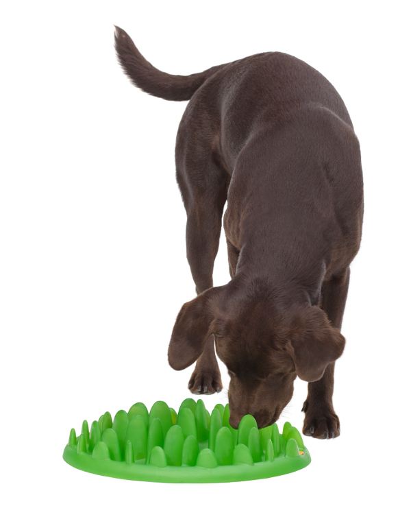 Interactive Green Lawn Plastic Dog Feeder for Slow Eating