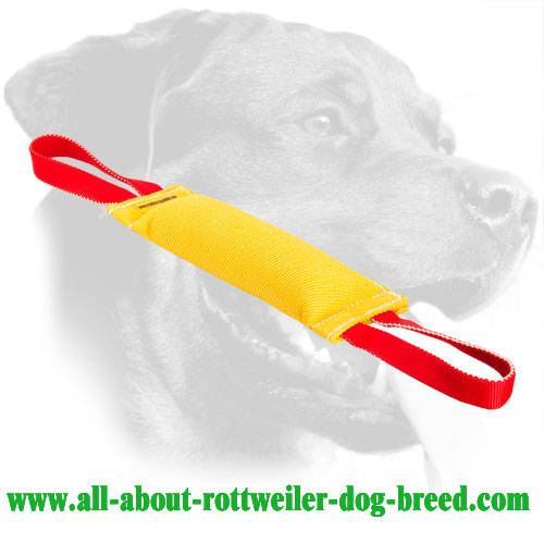 Durable bite tug for training Rottweiler puppies