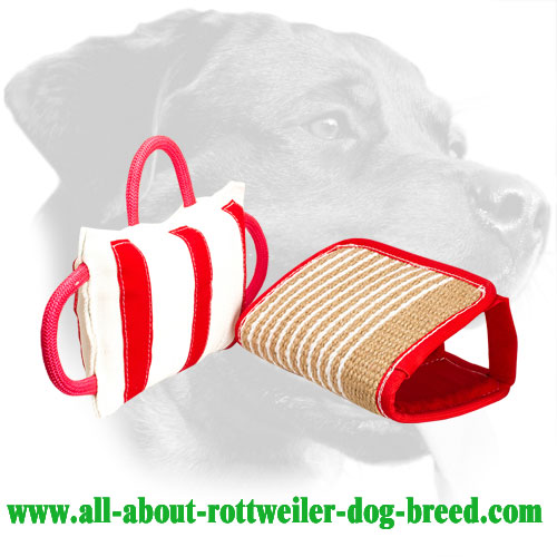 Rottweiler Bite Pad with Removable Jute Cover