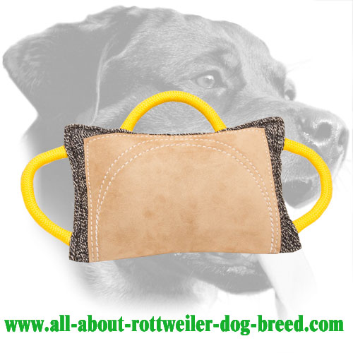 Safe Rottweiler Bite Pad Made of Jute and Leather