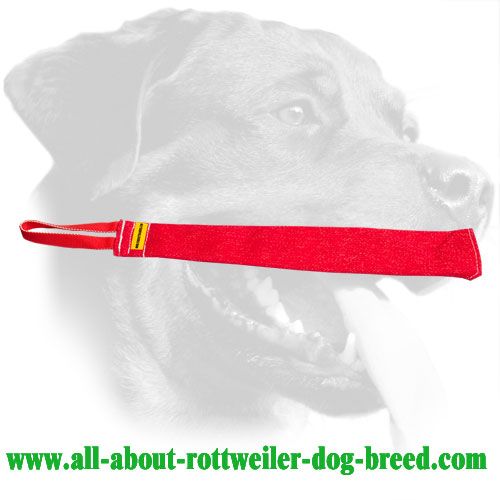Durable French Linen Rottweiler Bite Tag