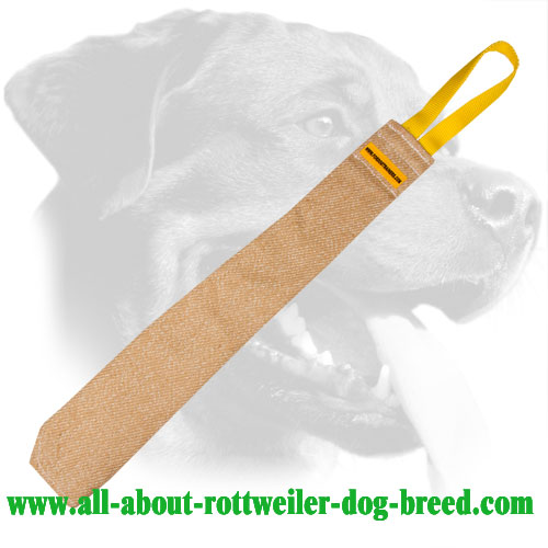 Rottweiler Bite Rag Made of Jute with Stitched Handle