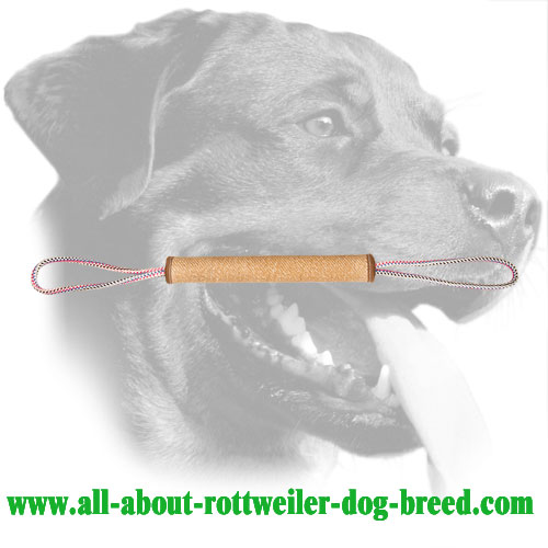 Rottweiler Bite Roll Made of Jute with Long Handles