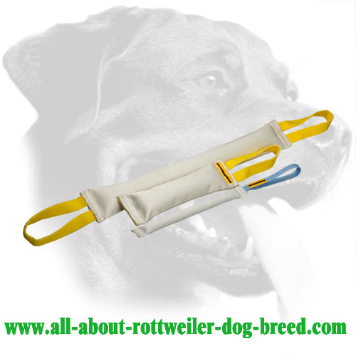 Properly Stuffed Fire Hose Rottweiler Bite Set