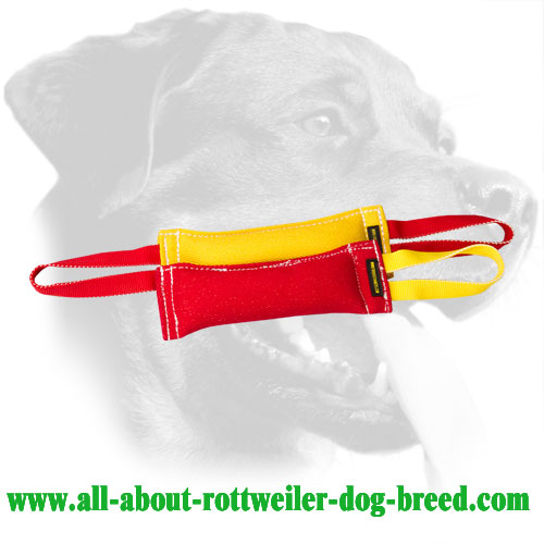 French Linen Rottweiler Bite Set Equipped with Durable Handles