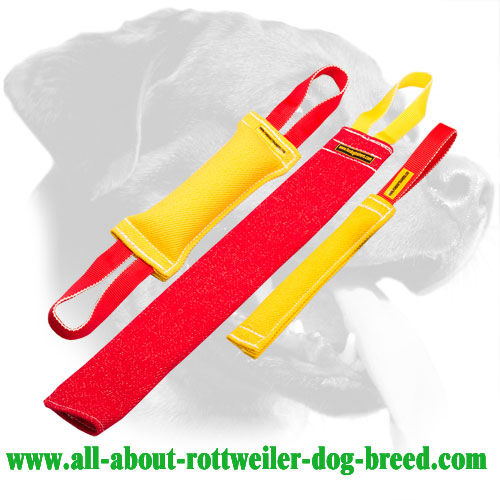 Rottweiler Bite Set Made of French Linen with Free Training Ball