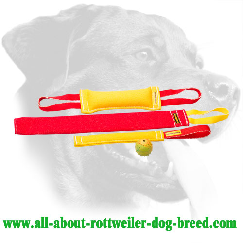 French Linen Rottweiler Bite Set Equipped with Stitched Handles