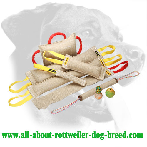 Heavy Stuffed Jute Rottweiler Bite Set