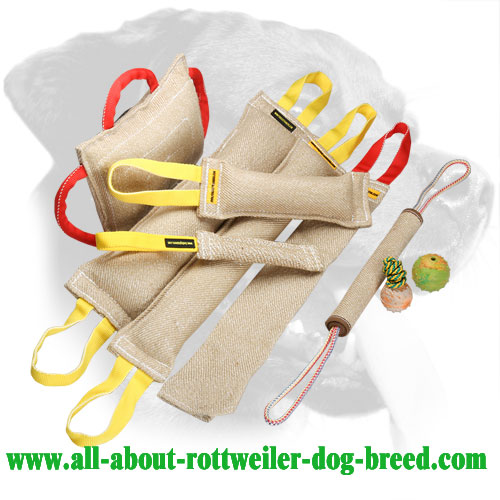 Rottweiler Retrieve Training Bite Set Made of Jute