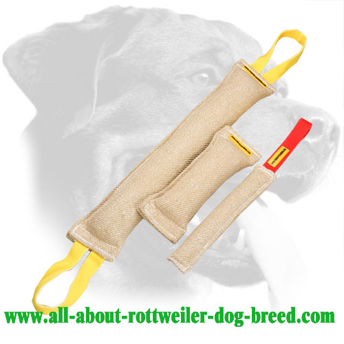 Jute Rottweiler Bite Set Equipped with Stitched Handles