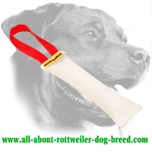 Rottweiler Bite Tug Made of Fire Hose with Safe Stuffing