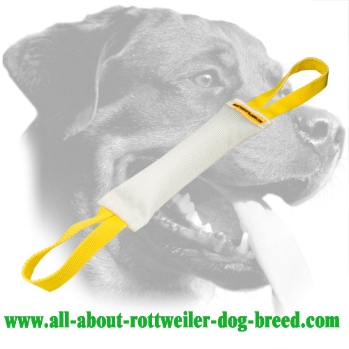 Fire Hose Rottweiler Bite Tug with Two Handles