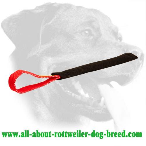 Rottweiler Bite Tug Made of French Linen with One Handle