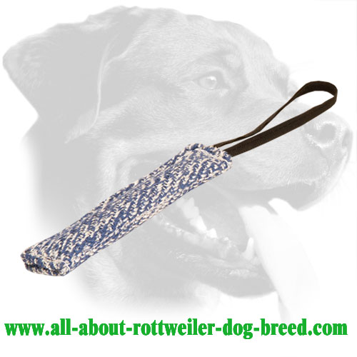 One Handle French Linen Rottweiler Bite Tug