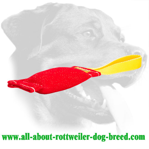 Rottweiler Bite Tug for Developing Prey Drive Made of French Linen