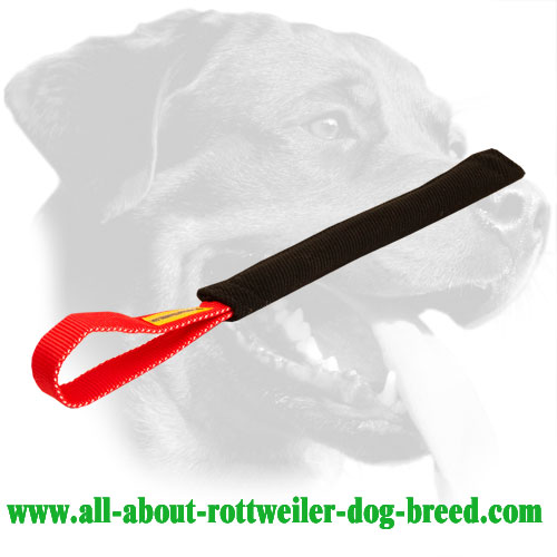 Retrieve Training French Linen Rottweiler Bite Tug