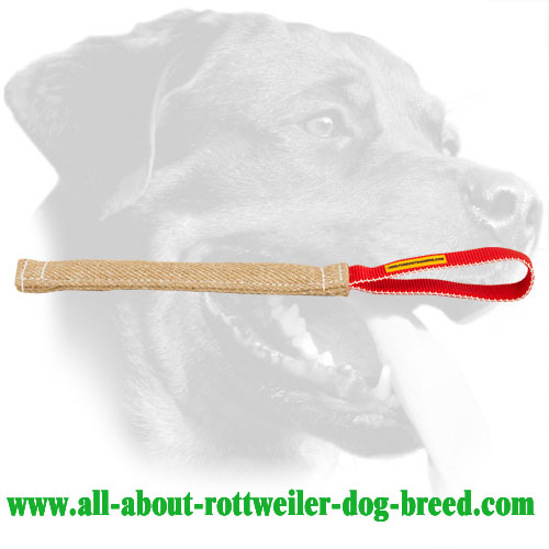 Compact Jute Bite Tug for Rottweiler Training