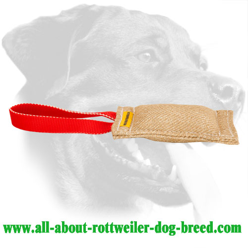 Rottweiler Bite Tug Made of Jute With a Durable Handle