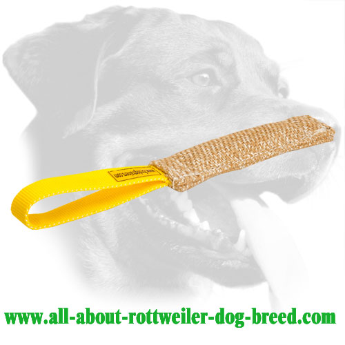 Durable Jute Bite Tug for Training Rottweilers