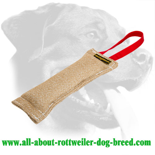 Rottweiler Bite Tug Made of Extra Durable Jute
