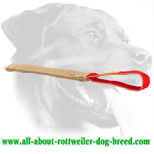 Rottweiler Bite Tug Made of Jute with a Long Handle