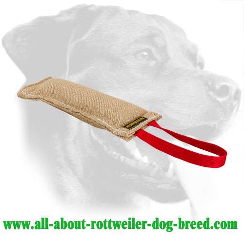 Jute Rottweiler Bite Tug Equipped With a Long Handle
