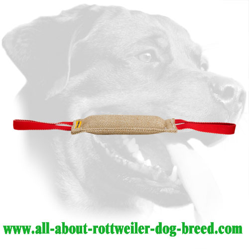 Rottweiler Bite Tug Made of Jute for Developing Prey Drive