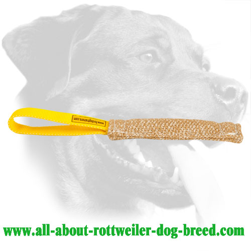 Rottweiler Bite Tug Made of Jute