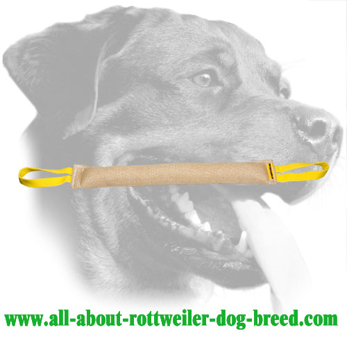 Rottweiler Bite Tug Made of Jute With Two Handles